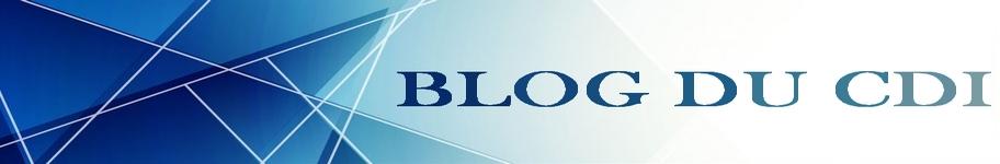 banniere bleue(blog du cdi 2)