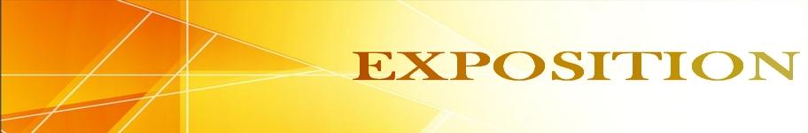 banniere jaune(exposition 2)